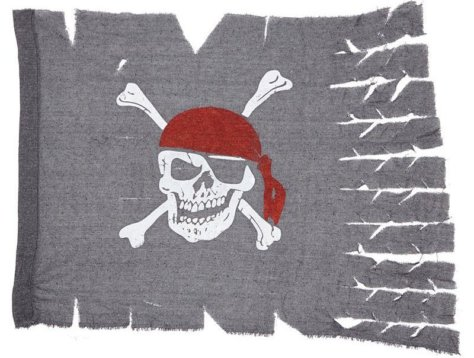 Totenkopf Flagge Piratenparty