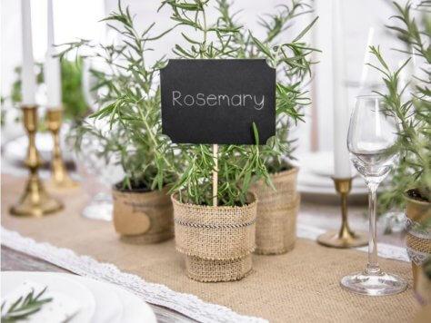 nachhaltige Tischdeko mit Kräutern