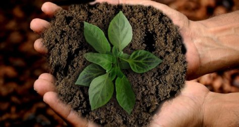 Was bedeutet nachhaltig feiern?